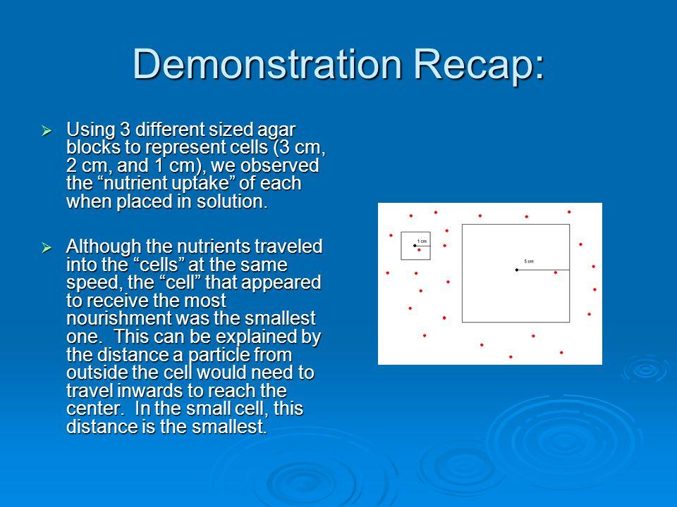 Demonstration Recap: