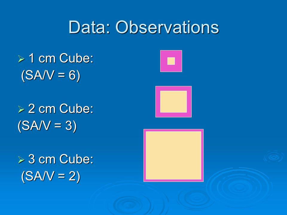 Data: Observations 1 cm Cube: (SA/V = 6) 2 cm Cube: (SA/V = 3)