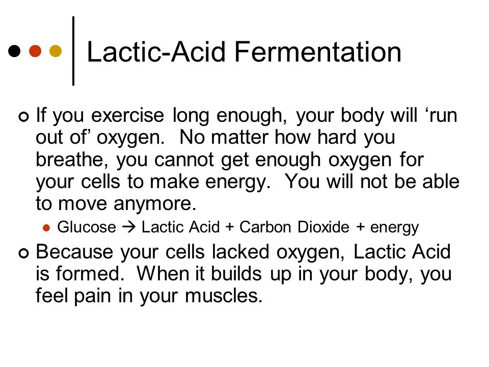 Lactic-Acid Fermentation