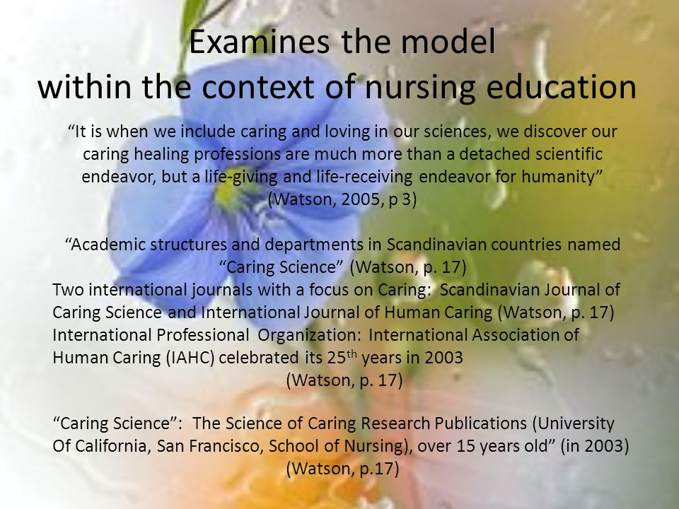 Examines the model within the context of nursing education