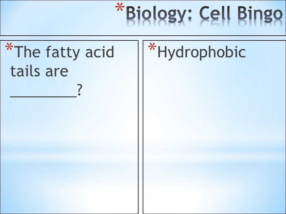 Biology: Cell Bingo The fatty acid tails are ________ Hydrophobic