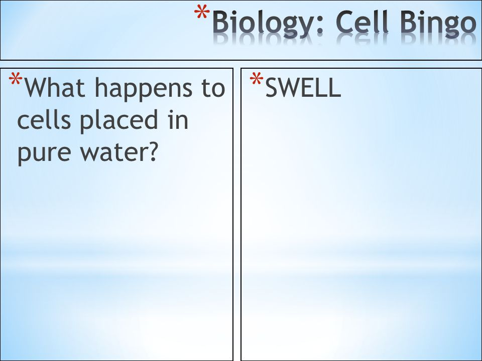 Biology: Cell Bingo What happens to cells placed in pure water SWELL