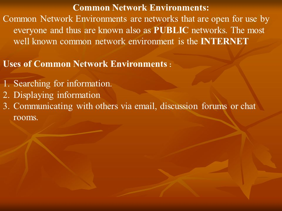 Common Network Environments: