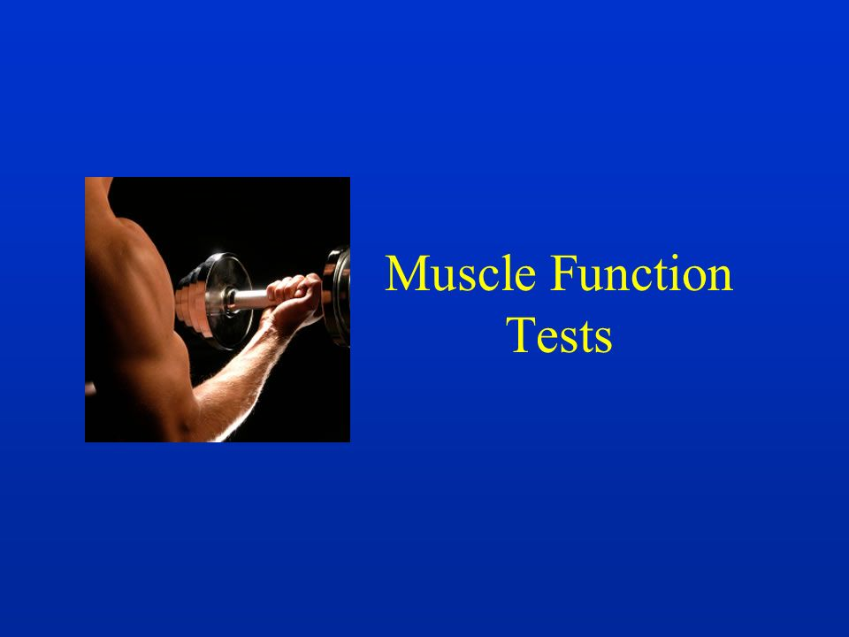 Muscle Function Tests