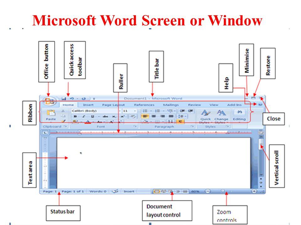 Microsoft Word Screen or Window