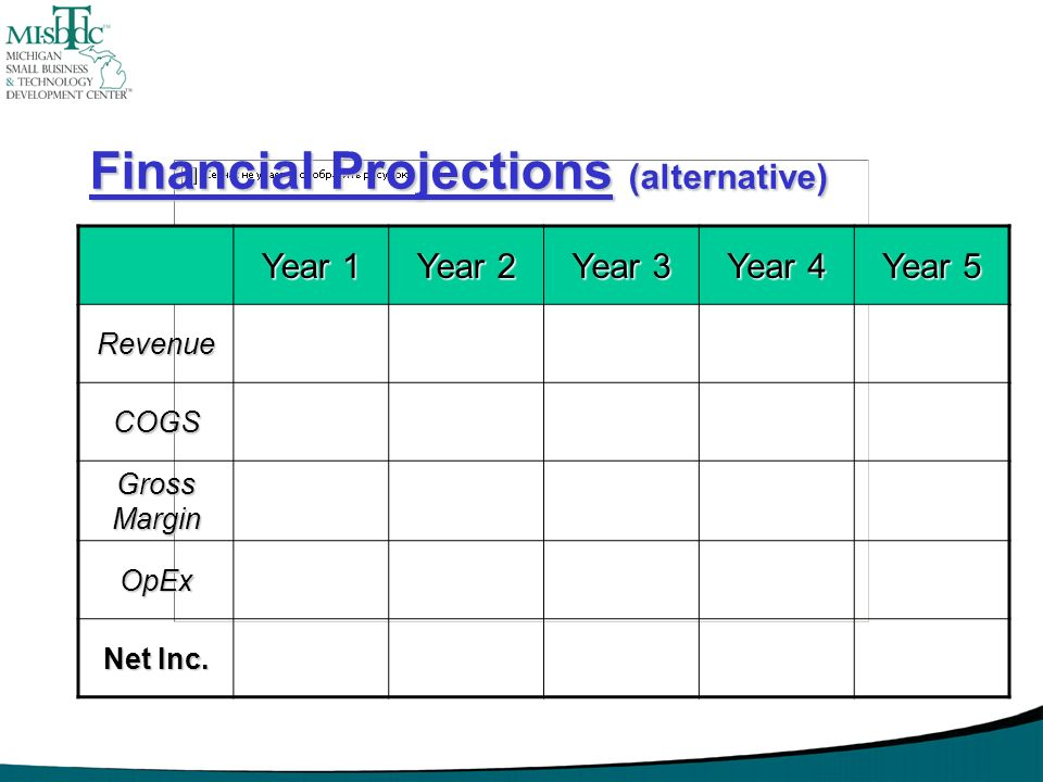 Financial Projections (alternative)