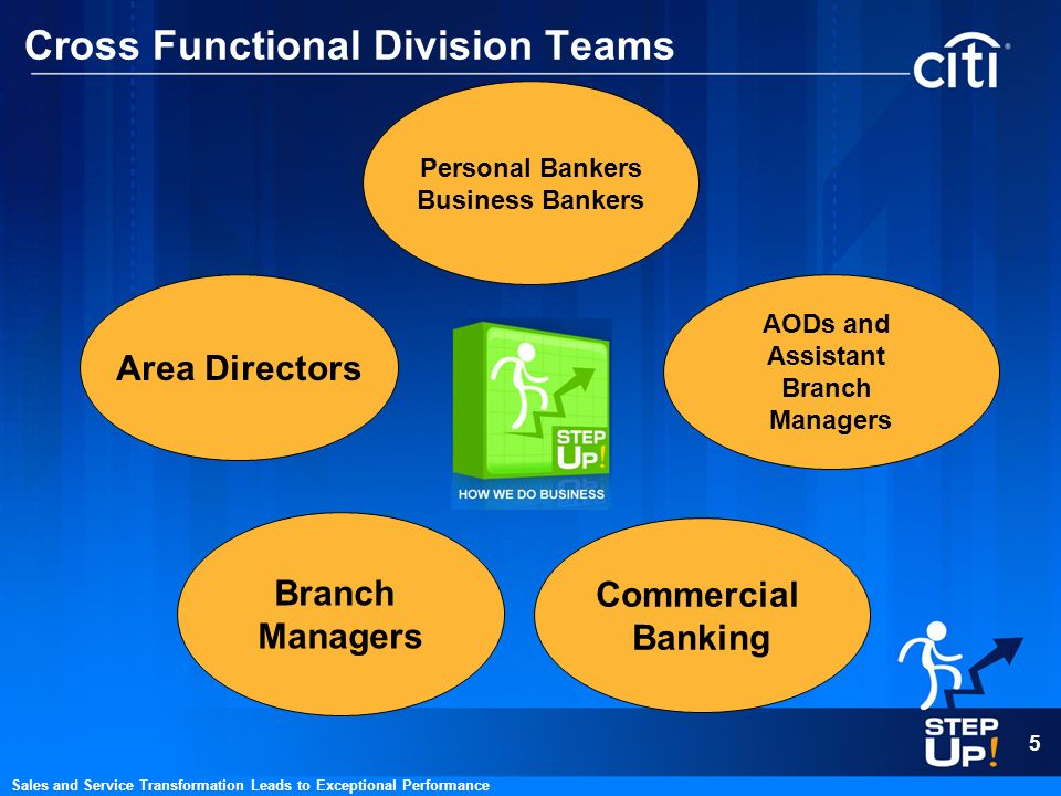 Cross Functional Division Teams