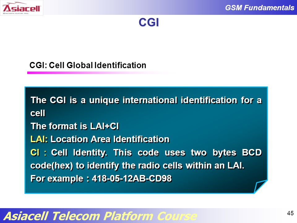 CGI The CGI is a unique international identification for a cell
