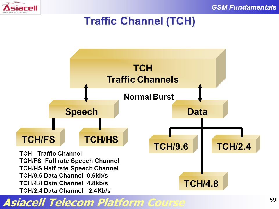 Traffic Channel (TCH) TCH Traffic Channels Speech Data TCH/FS TCH/HS