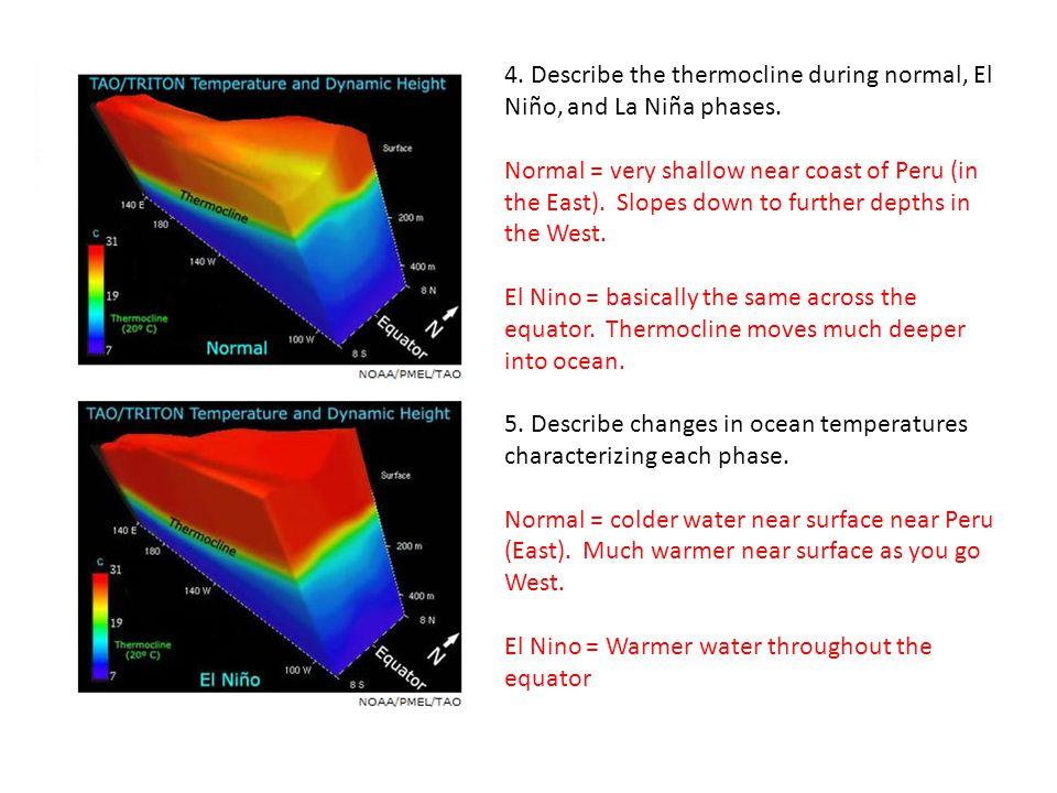 4. Describe the thermocline during normal, El Niño, and La Niña phases.