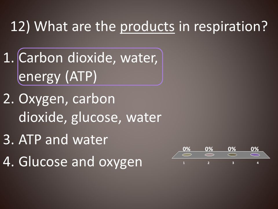 12) What are the products in respiration