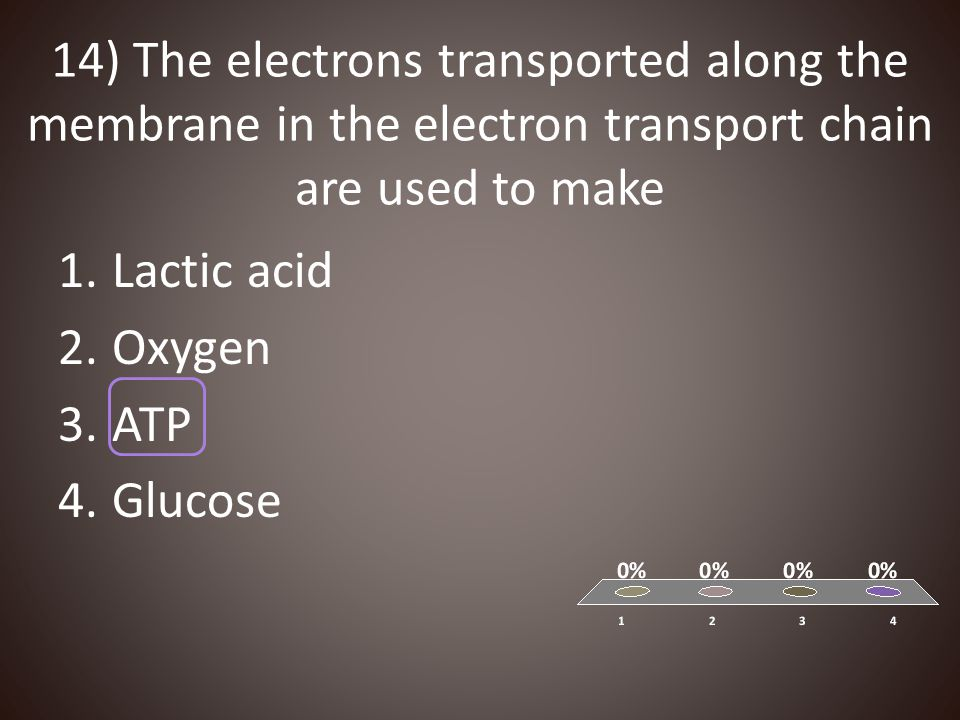 14) The electrons transported along the membrane in the electron transport chain are used to make