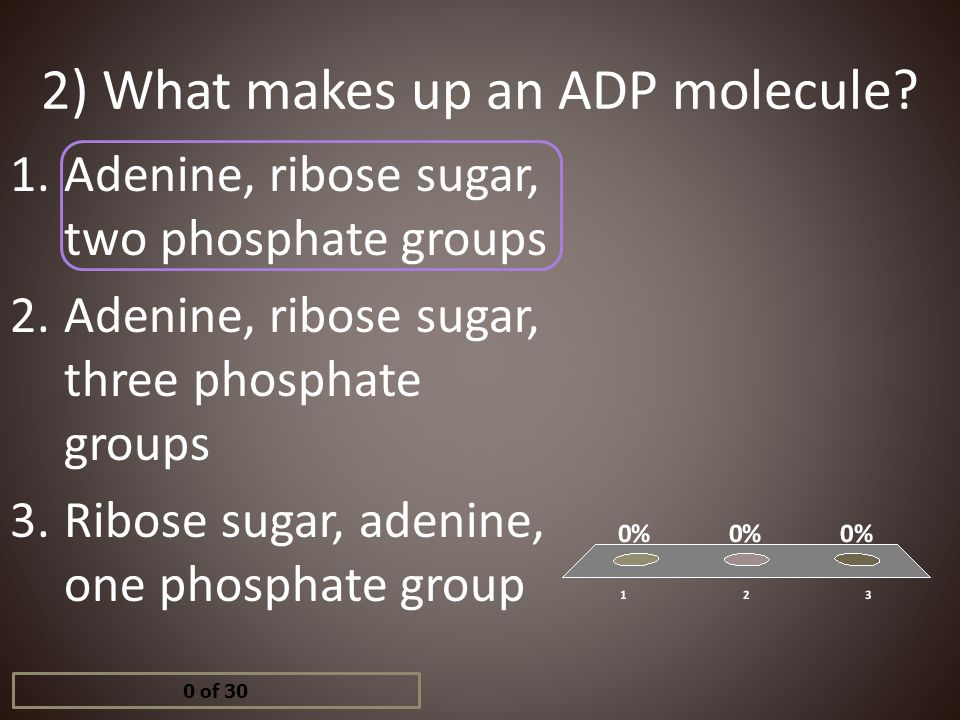 2) What makes up an ADP molecule