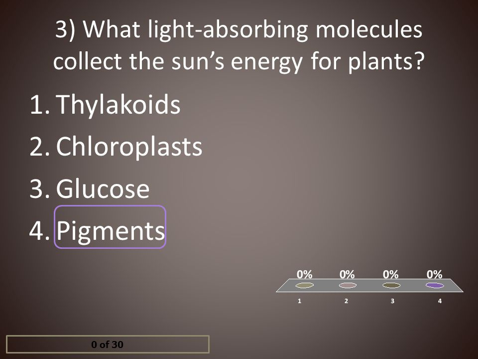 3) What light-absorbing molecules collect the sun's energy for plants