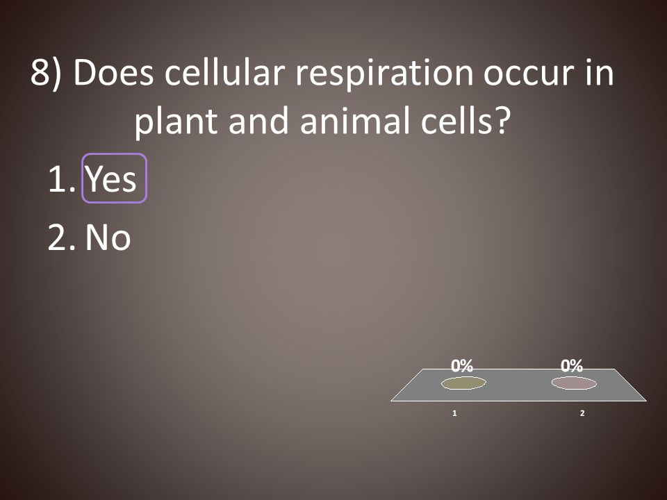 8) Does cellular respiration occur in plant and animal cells
