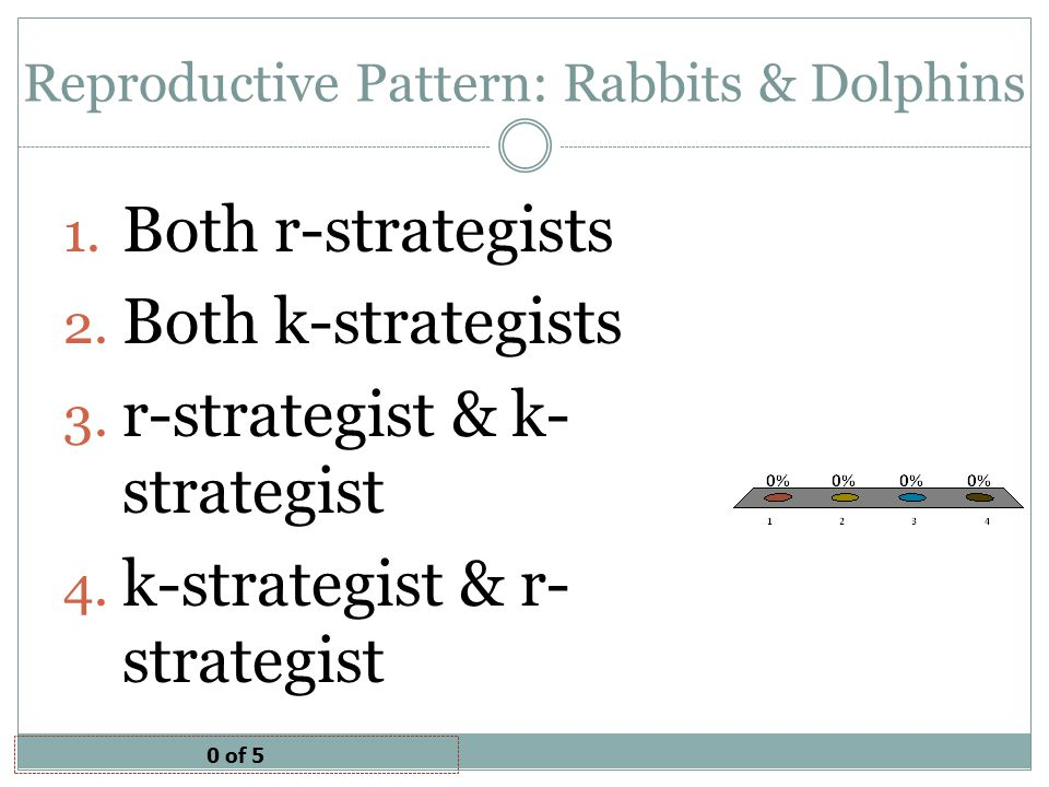 Reproductive Pattern: Rabbits & Dolphins
