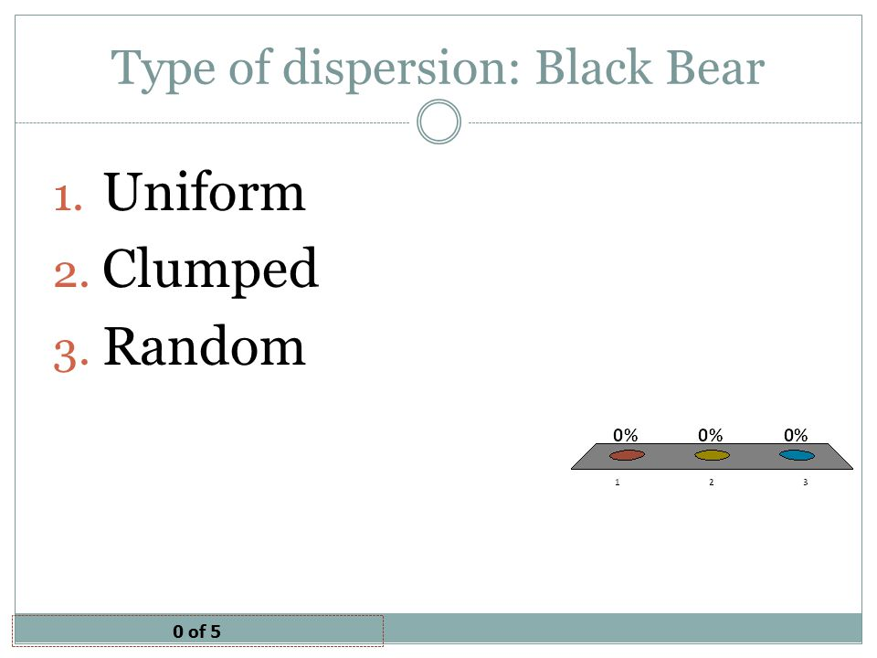 Type of dispersion: Black Bear