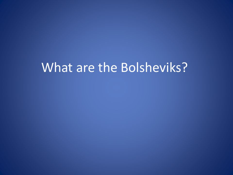 What are the Bolsheviks