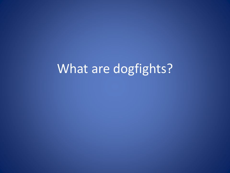 What are dogfights