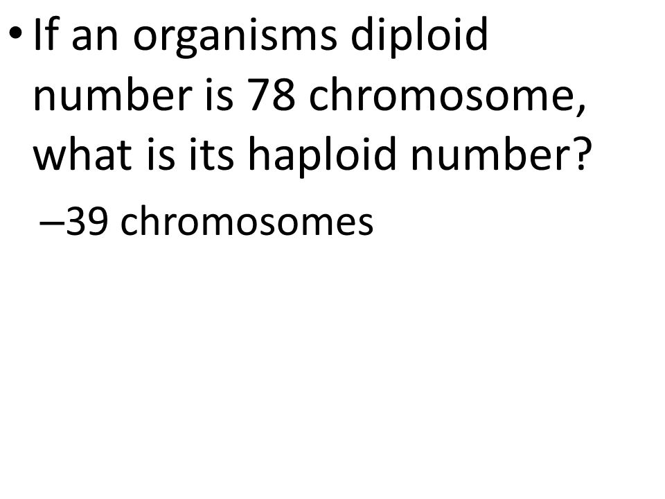 If an organisms diploid number is 78 chromosome, what is its haploid number