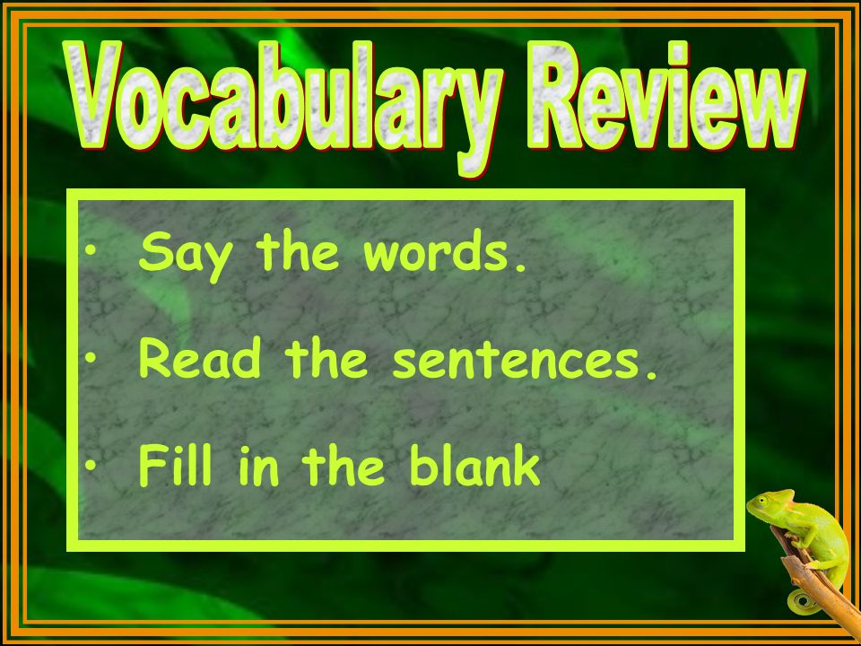 Vocabulary Review Say the words. Read the sentences. Fill in the blank