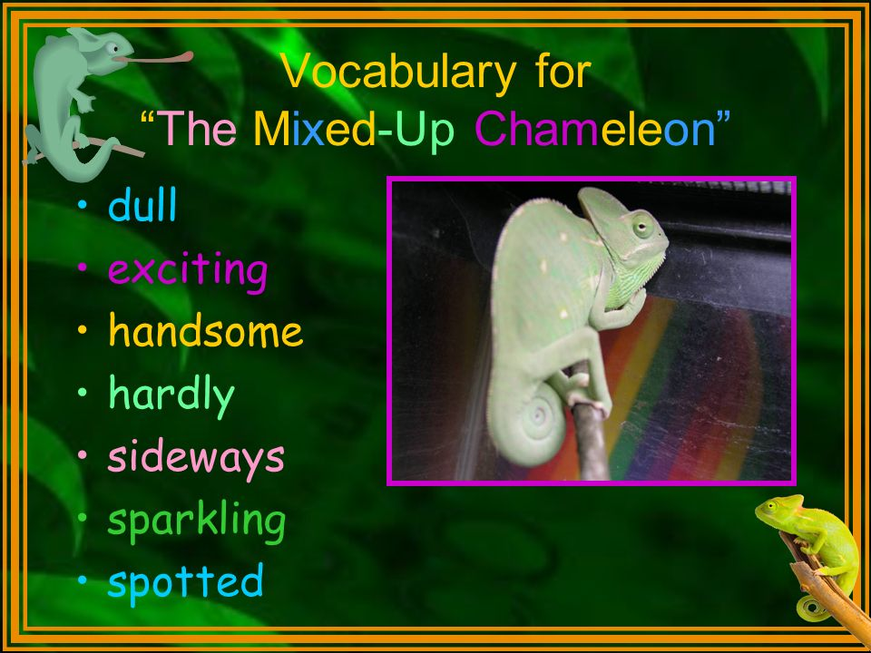 Vocabulary for The Mixed-Up Chameleon