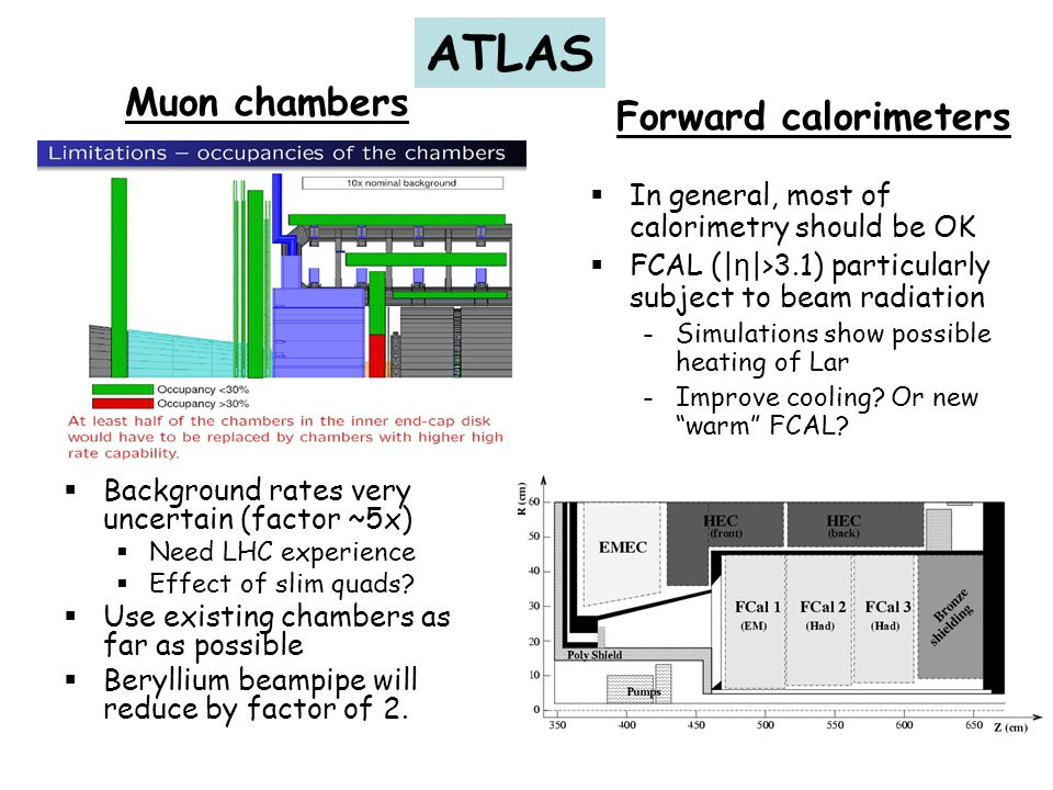 ATLAS Muon chambers Forward calorimeters