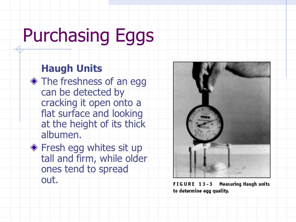 Purchasing Eggs Haugh Units