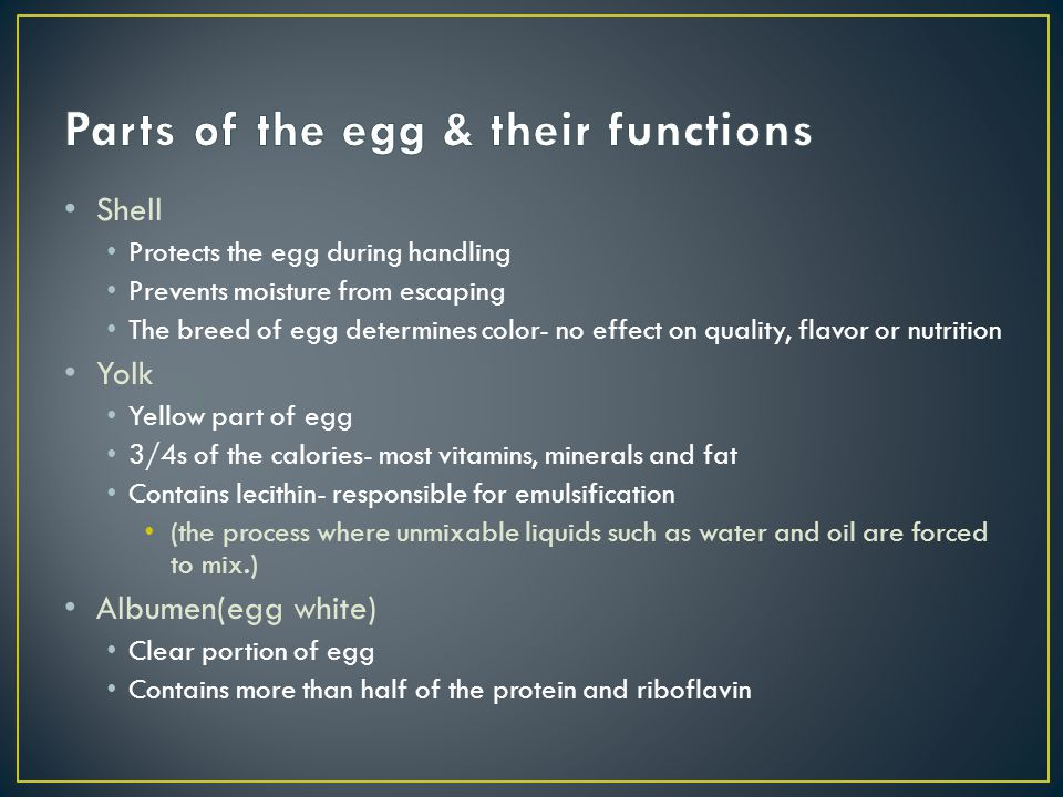 Parts of the egg & their functions