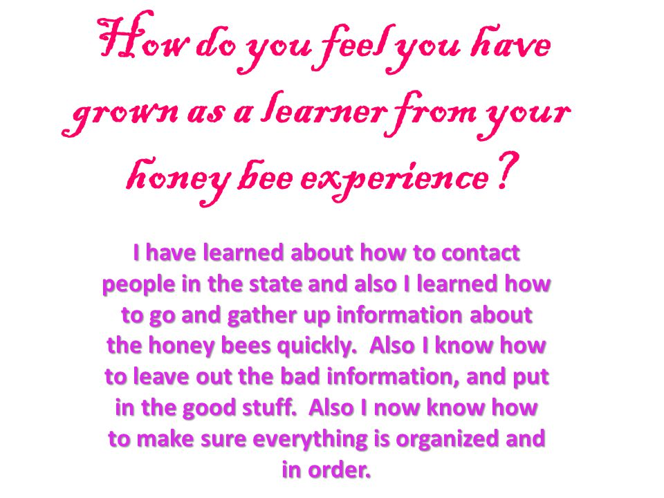 How do you feel you have grown as a learner from your honey bee experience