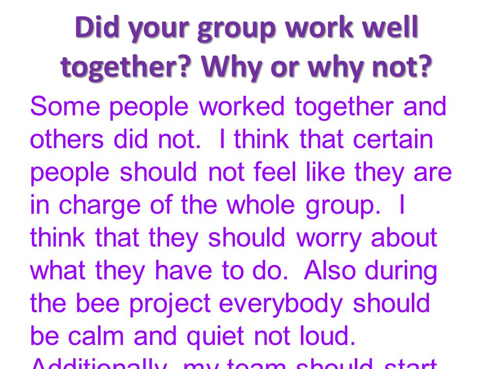 Did your group work well together Why or why not