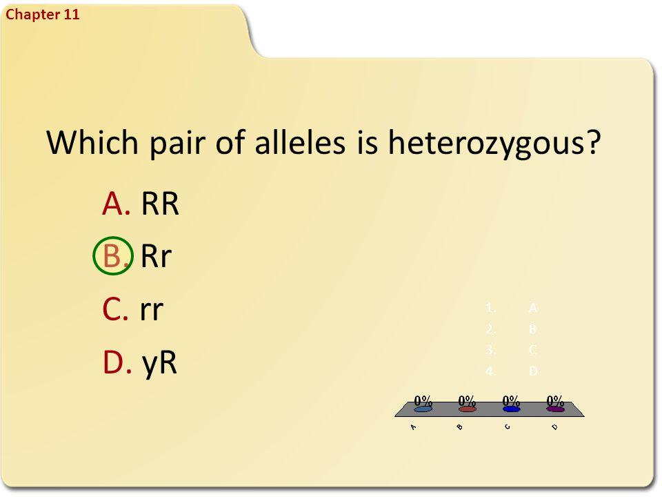 Which pair of alleles is heterozygous