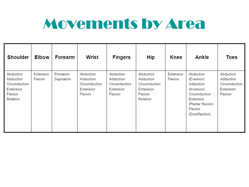 Movements by Area Shoulder Elbow Forearm Wrist Fingers Hip Knee Ankle
