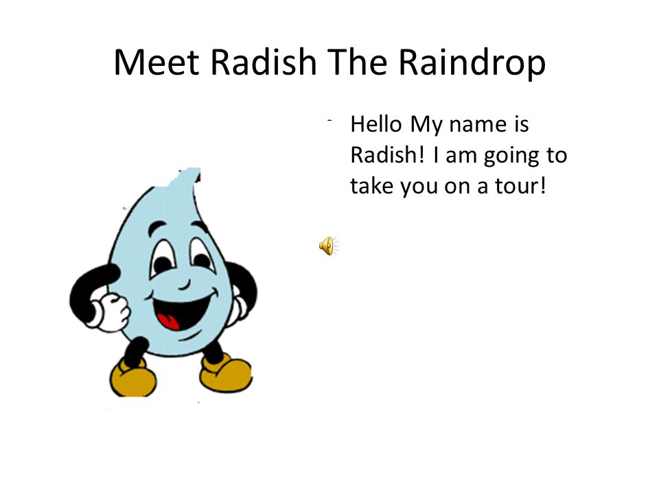 Meet Radish The Raindrop