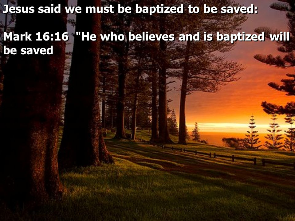 Jesus said we must be baptized to be saved: