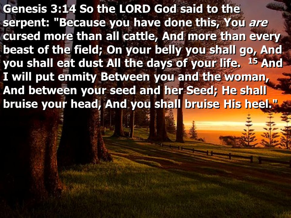 Genesis 3:14 So the LORD God said to the serpent: Because you have done this, You are cursed more than all cattle, And more than every beast of the field; On your belly you shall go, And you shall eat dust All the days of your life. 15 And I will put enmity Between you and the woman, And between your seed and her Seed; He shall bruise your head, And you shall bruise His heel.