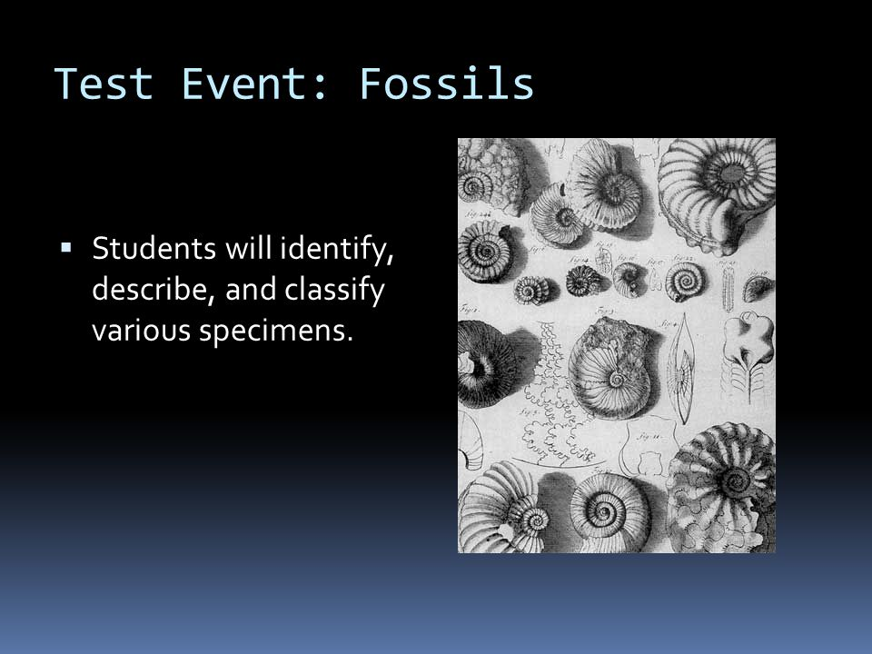 Test Event: Fossils Students will identify, describe, and classify various specimens.