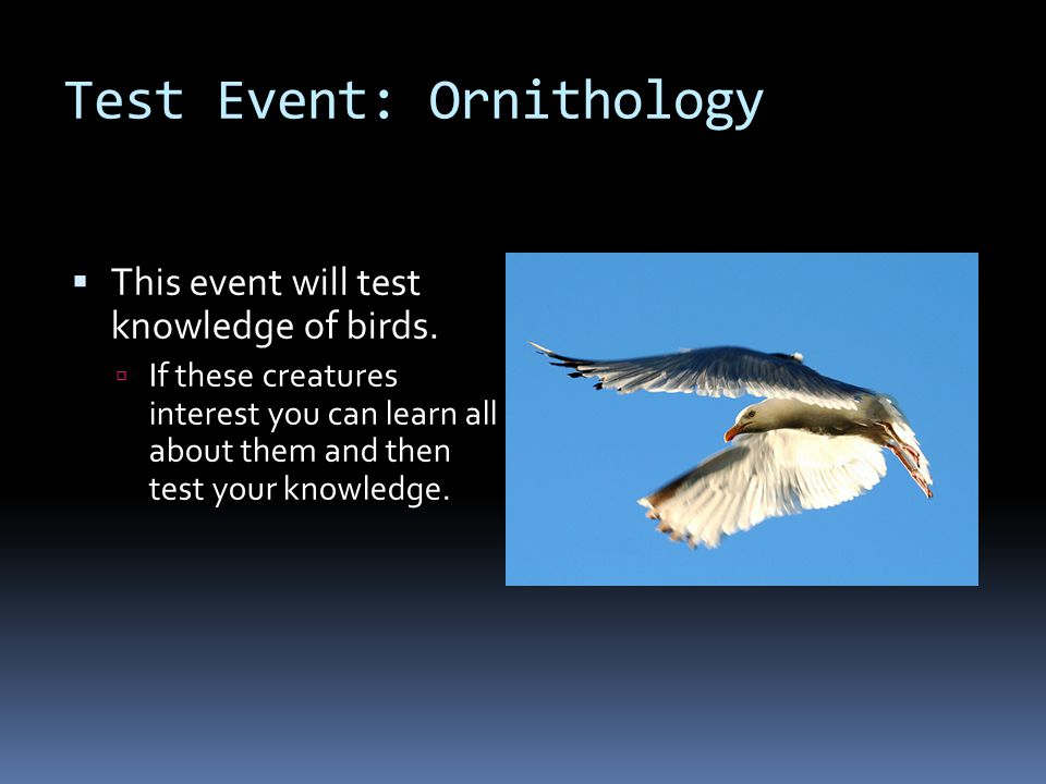 Test Event: Ornithology