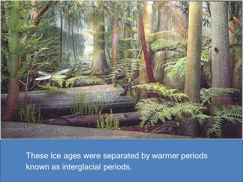 These Ice ages were separated by warmer periods known as interglacial periods.