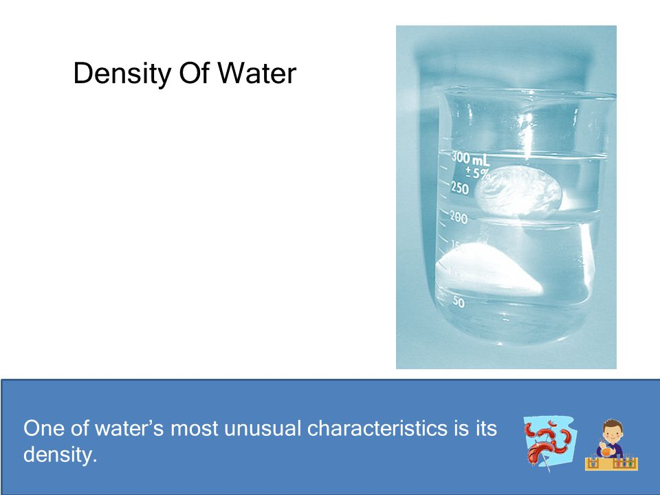 Density Of Water One of water's most unusual characteristics is its density.