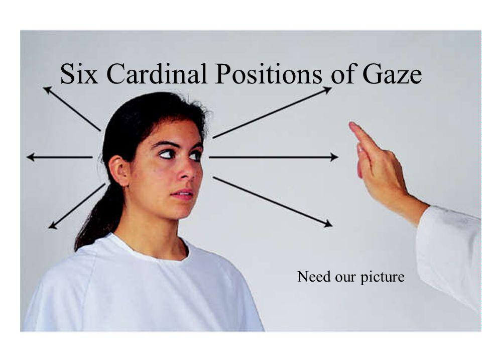 Six Cardinal Positions of Gaze