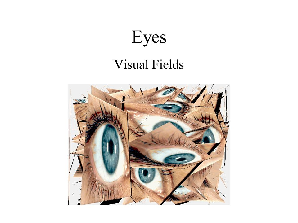 Eyes Visual Fields Visual Fields