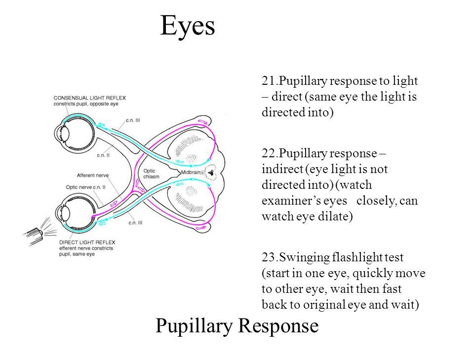 Eyes Pupillary Response
