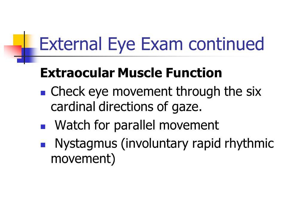 External Eye Exam continued