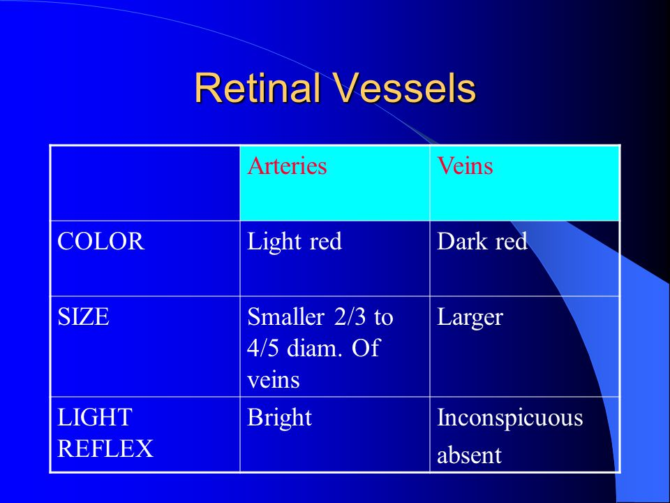 Retinal Vessels Arteries Veins COLOR Light red Dark red SIZE