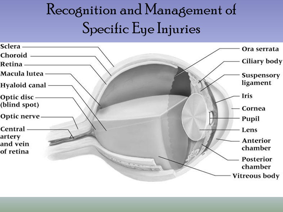 Recognition and Management of Specific Eye Injuries