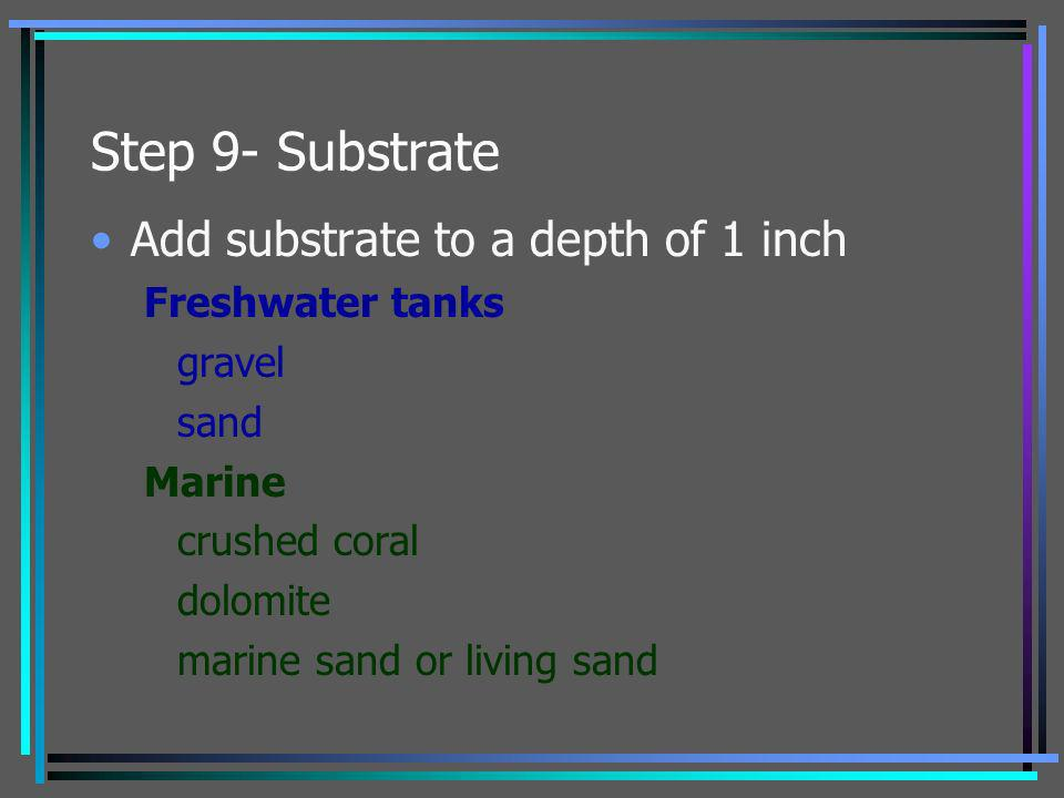 Step 9- Substrate Add substrate to a depth of 1 inch Freshwater tanks