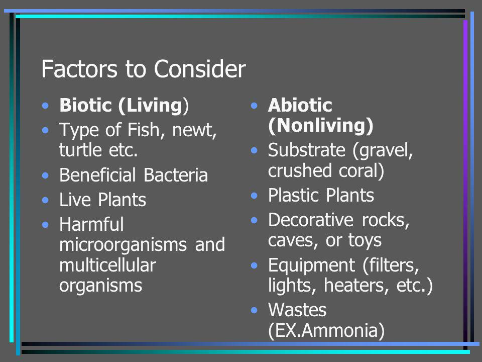Factors to Consider Biotic (Living) Type of Fish, newt, turtle etc.