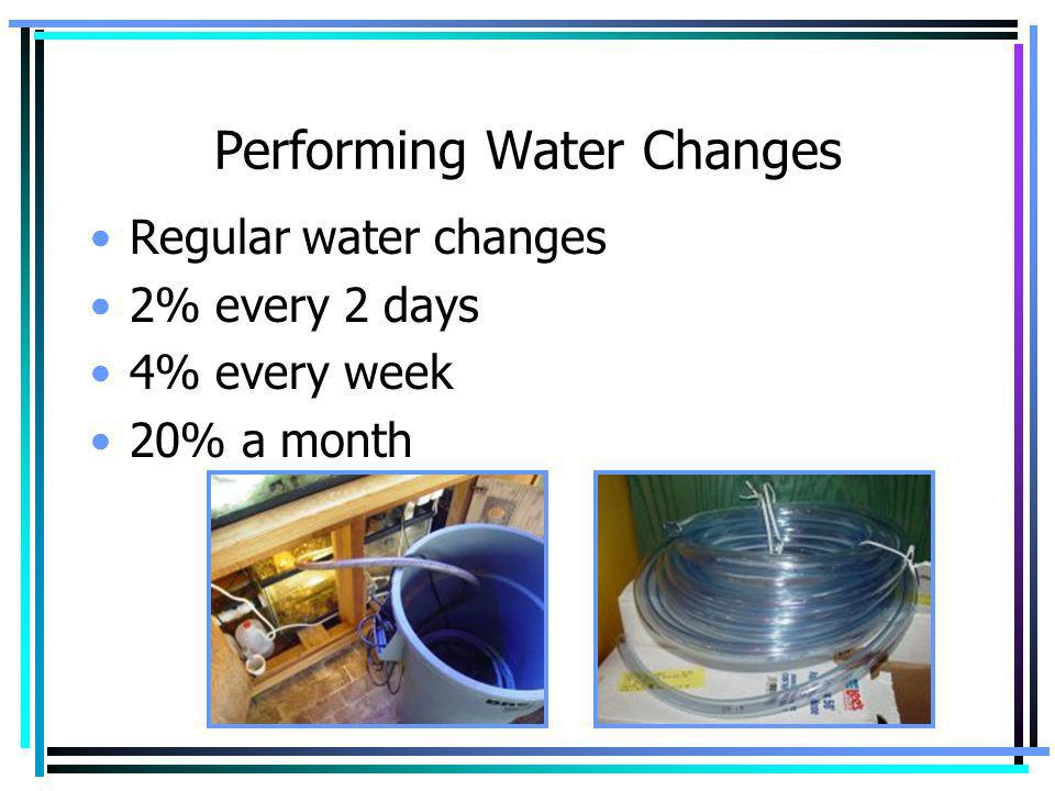 Performing Water Changes