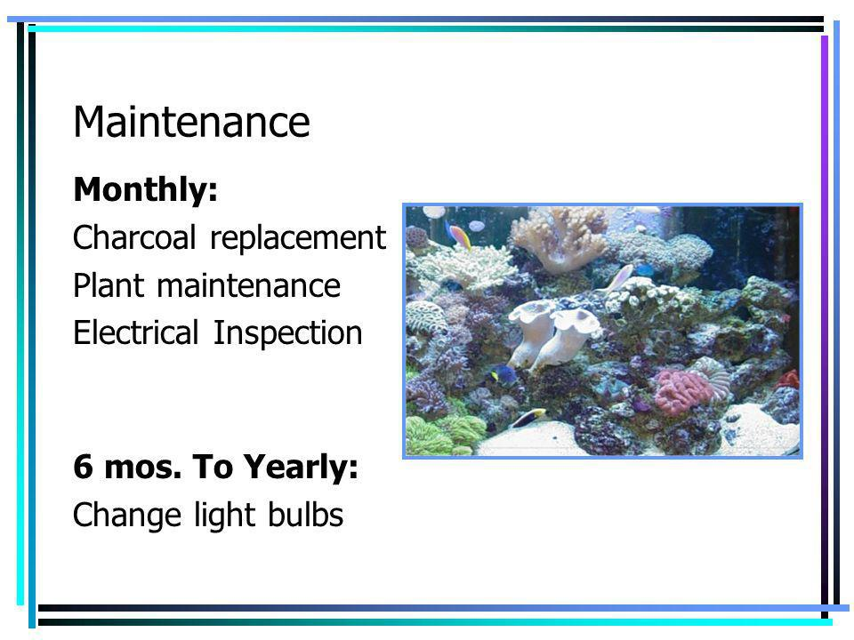 Maintenance Monthly: Charcoal replacement Plant maintenance
